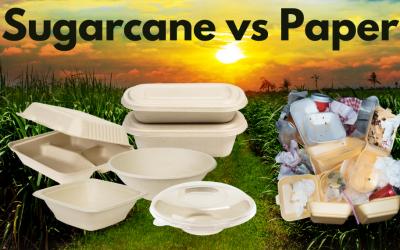 Sugarcane Packaging Vs Paper Packaging